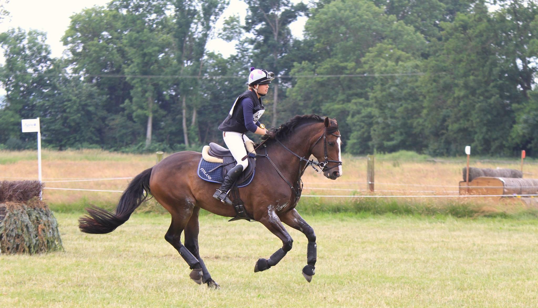 elektrolyytti hevoselle