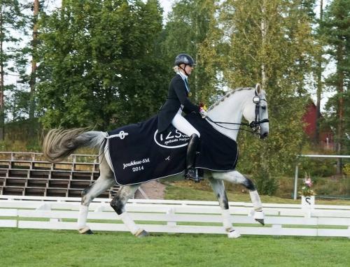 hevosen vitamiinit